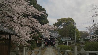 yusui.jpg